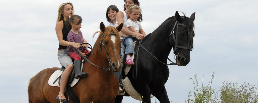 Horse Riding With Your Family